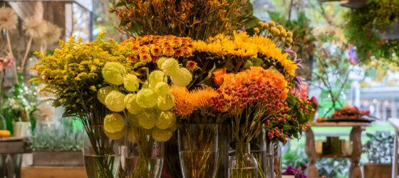 Schnittblumen Bei Blumen Kefer